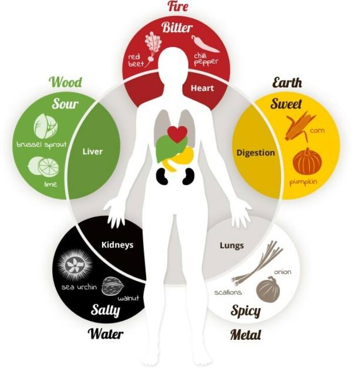 Traditional Chinese Medicine - the Five Elements